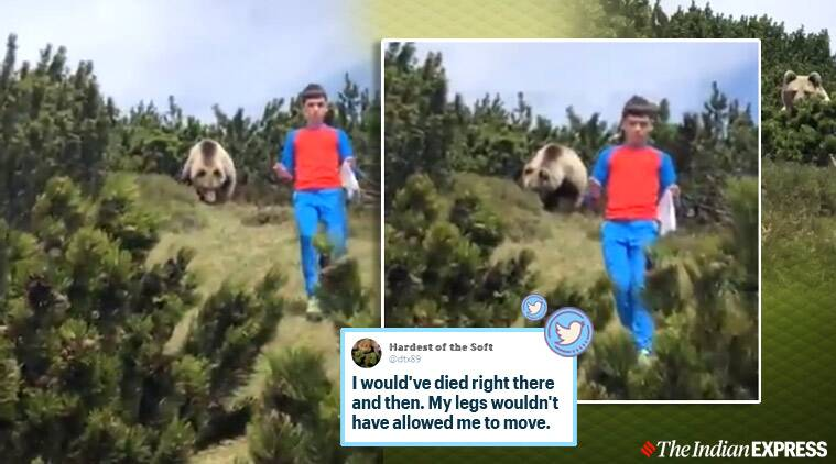 bear, bear attack, 12 year old escapes bear, Italy, bear boy viral video, twitter reactions,