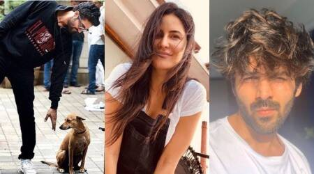 Celebrity social media photos: Katrina Kaif, Vicky Kaushal, Kartik Aaryan and others