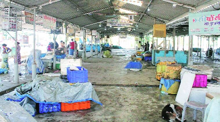 Pandemic, monsoon ban, Vasai fishermen stare at a bleak year
