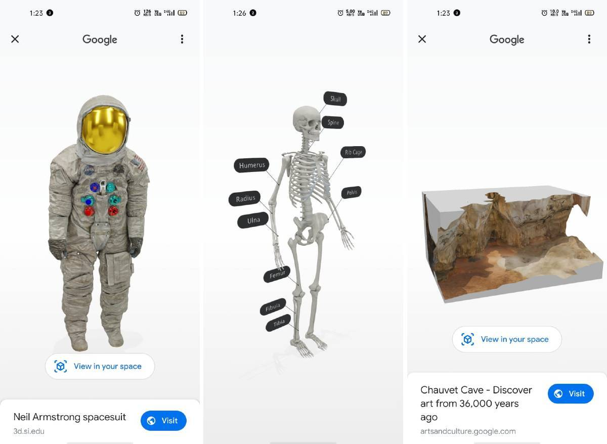 Google 3D animals: List of animals, other objects in AR, how to watch