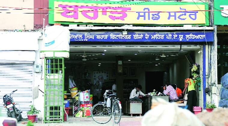 Second arrest in Ludhiana seed 'scam': Farmer who sold PAU seeds to Brar Store held