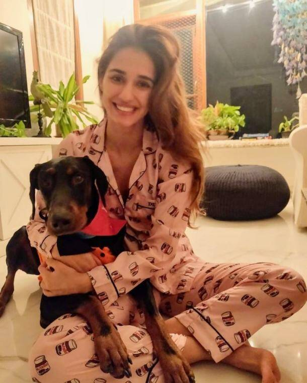 disha patani pet lover