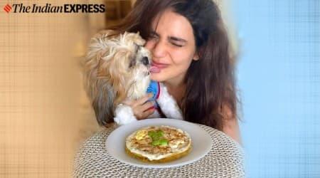 doggie cake, pet food, pet cake, karishma tanna, pet love, dog love, koko love, karishma tanna news, indianexpress.com, indianexpress,