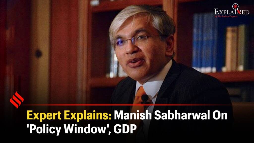 Expert Explains: Manish Sabharwal On 'Policy Window', GDP