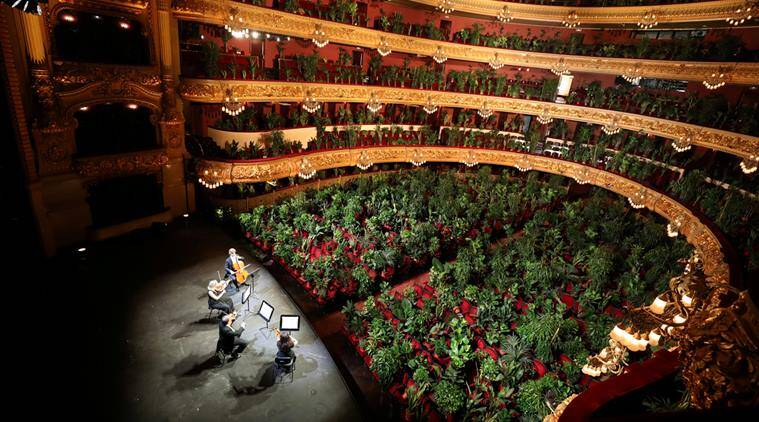 opera house open for plants, orchestra perform for plants, barcelona opera, opera plant concert, odd news, viral news, spain news, indian express