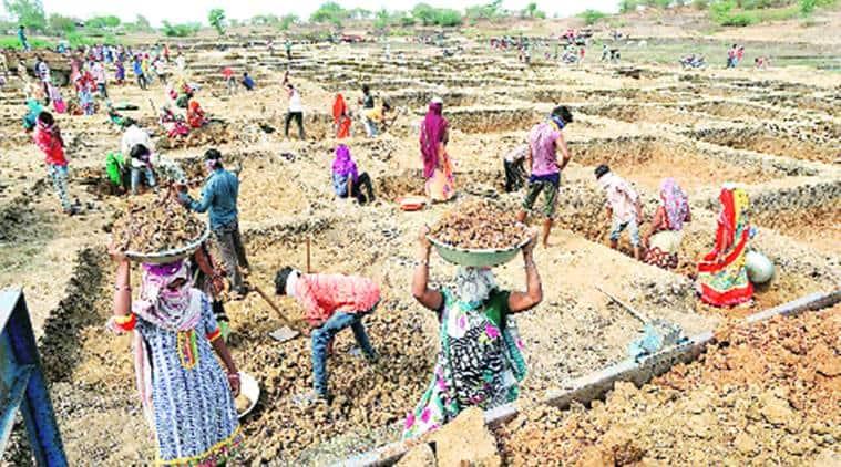 MNREGA, MNREGA work Dahod, Dahod MNREGA work, Ahmedabad news, India news, Indian Express