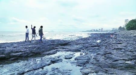 maharashtra monsoon, imd, imd maharashtra weather update, imd maharashtra monsoon update, southwest monsoon in mumbai, monsoon arrival in mumbai, indian express news