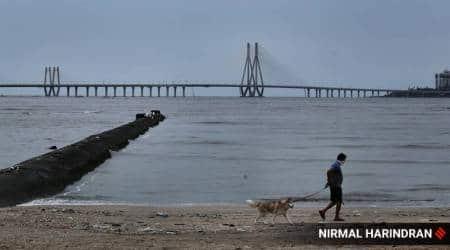 Maharashtra monsoon, IMD forcast, orange alert, Mumbai news, Indian express news