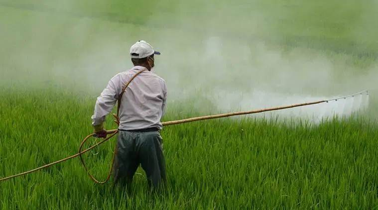 Pesticide industry blames 'MNC lobby' for proposed ban on pesticides