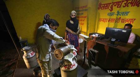 India's Milk demand, Milk demand down, India lockdown, India coronavirus, India festive season, Uttar Pradesh milk business, Amroha milk production, Indian express