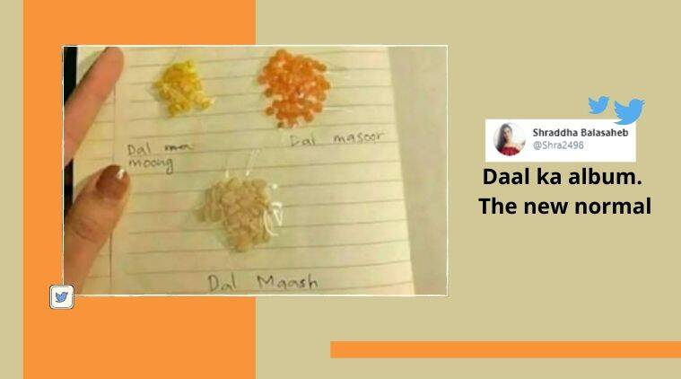daal, lentils, daal identification, daal manual, lentils, manual, desi tutorials, desi jugaad, trending news, What is trending, Indian Express news.