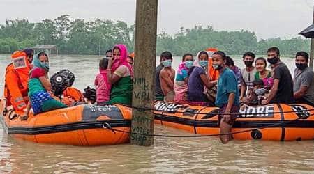 Assam floods, assam flood death toll, assam flood news, kaziranga national park flood, kaziranga animals dead flood, assam news, indian express