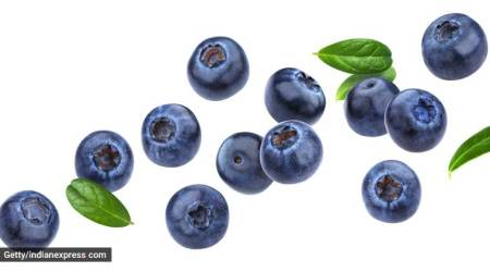 blueberries, skincare benefits of blueberries, blueberries for clear skin, acne problems, natural skincare solutions, indian express, indian express news