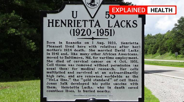 Henrietta Lacks, HeLa cell line, medical ethics violations, ethics in medical research violation, Tuskegee Syphilis Study, J Marion Sims, express explained, indian express