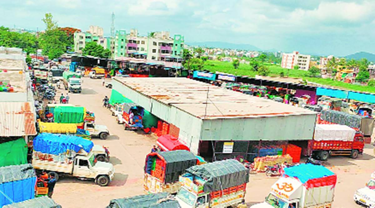 Agriculture Produce Market Committee, vegetable market, Ahmedabad news, Gujarat news, Indian express news
