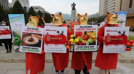 South Korea, Dog Funeral, Dog Meat Day, Activists