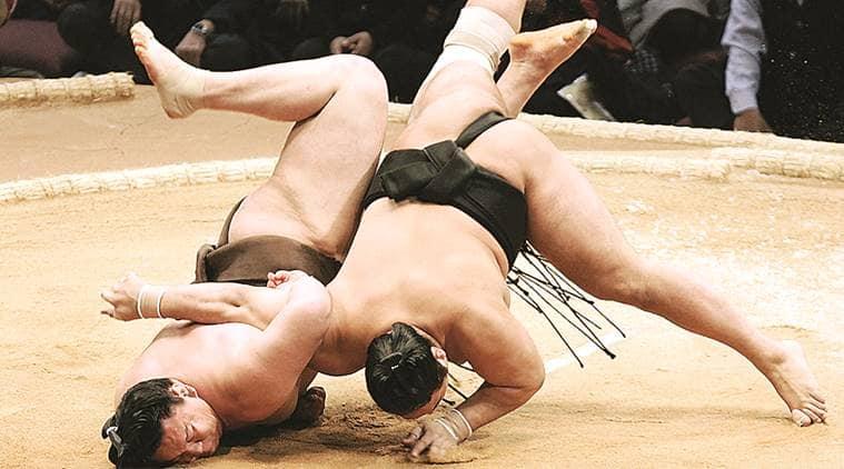 Sumo, Japanese sumo antibody, covid 19 antibody Sumo