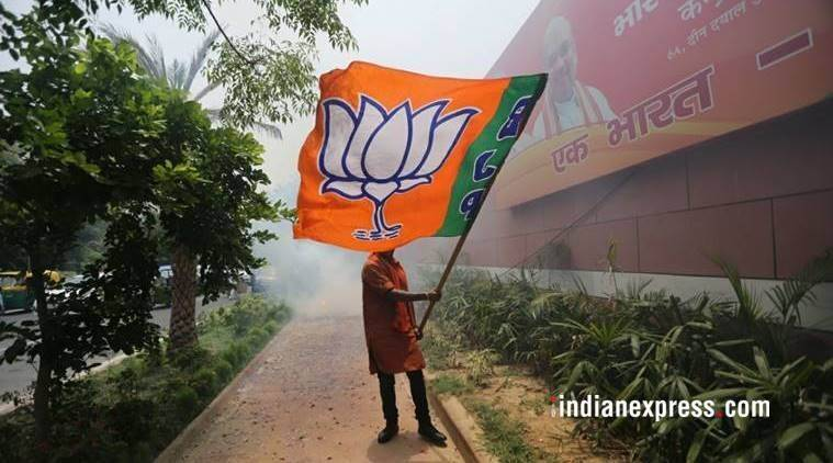 BJP's new team checks rebels, rewards loyalists and outsiders