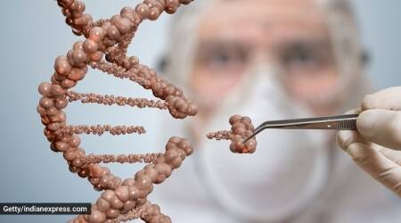 K-Ras, cancer, protein, indianexpress.com, indianexpress, K-Ras mutations, types of cancer, pancreatic cancer, lung cancer, disease causing proteins,