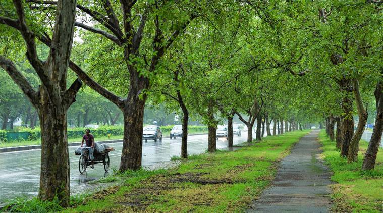 Weather Today: Heavy rain likely in northeast India