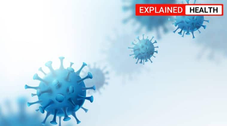 coronavirus, covid-19, coronavirus immunity, coronavirus structure, coronavirus PLpro, coronavirus latest news, coronavirus research, indian express news