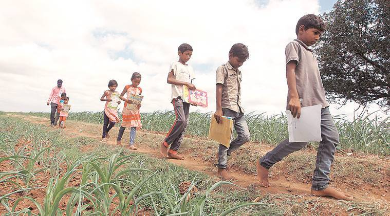 For Gujarat tribal children with no TV or Internet, school comes home on their teacher's smartphone