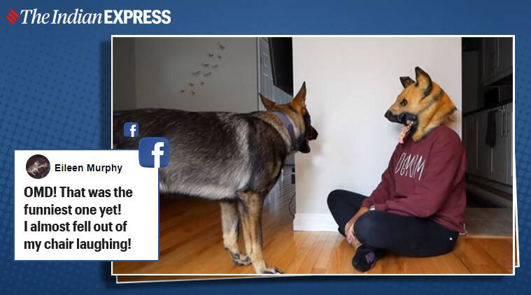 Woman Pranks Pet Dogs Wearing Mask Their Reactions Win The Internet Trending News The Indian Express