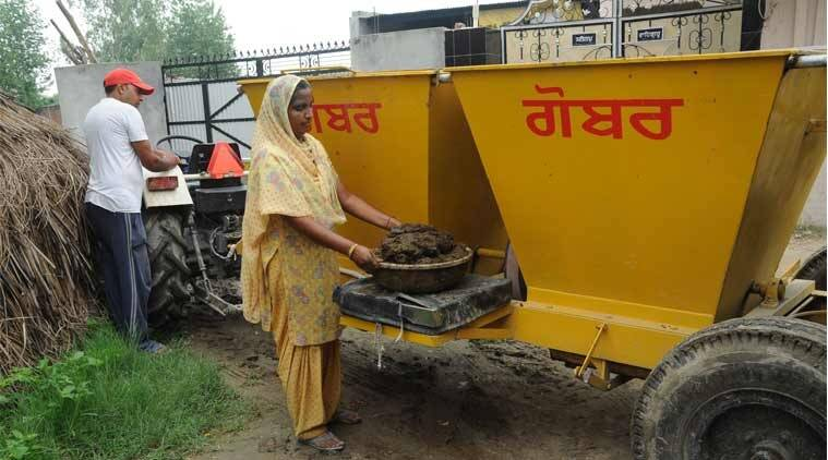 gujarat farmers, gujarat farmers cow dung earning, gujarat farmers cow dung supply, gujarat farmers cow dung suplly to biogas plant, indian express news