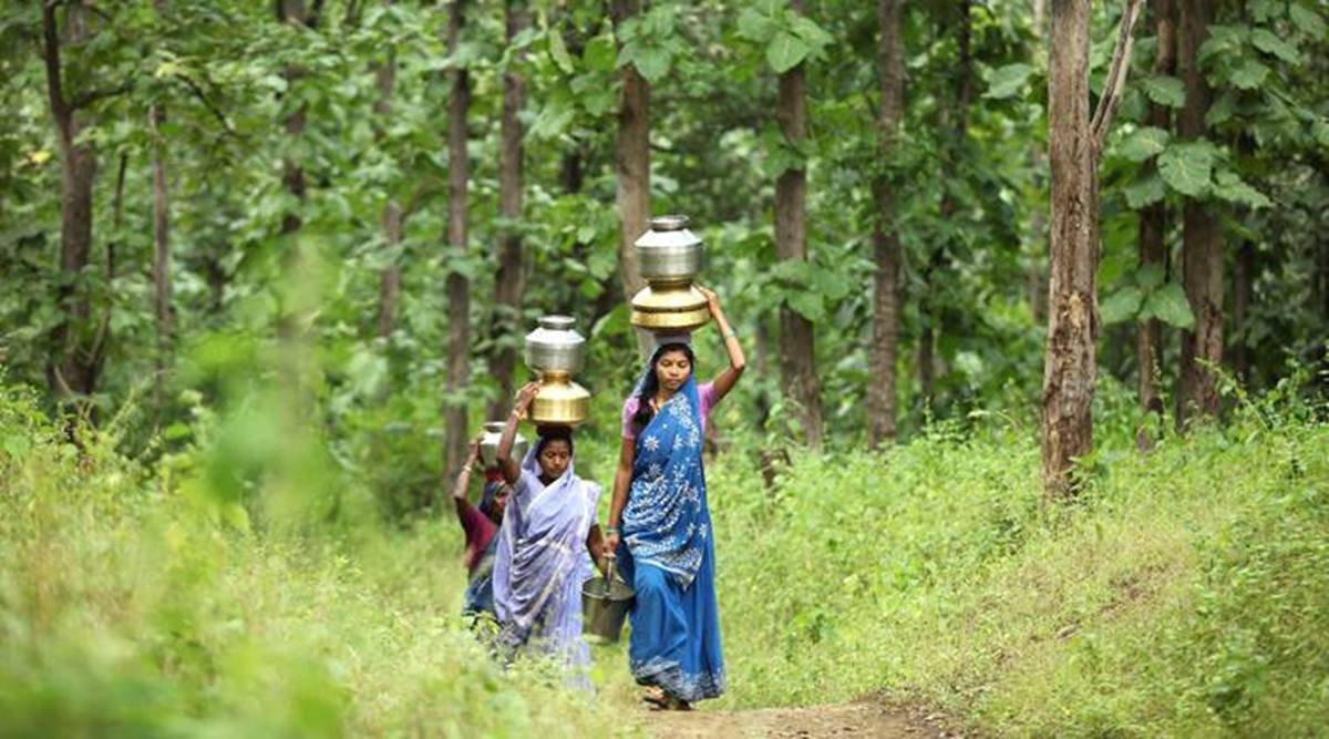 Climate change, forest restoration, sustainable mechanish, Empower local communities, Indian express news