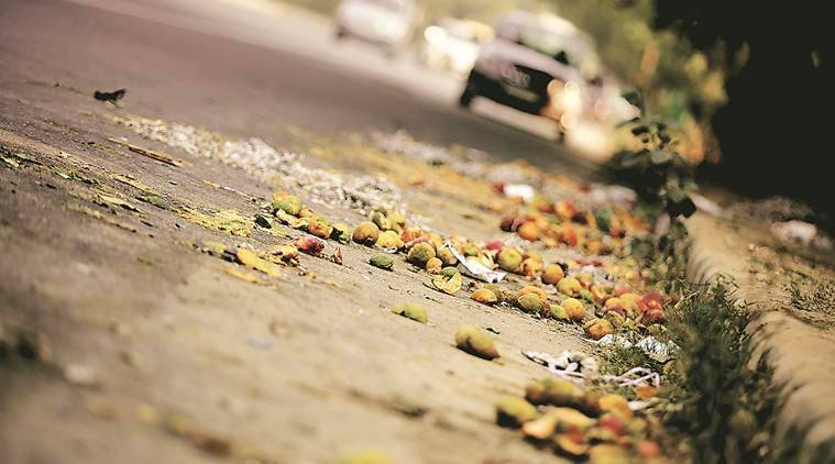 Delhi Police, Delhi road accident, Delhi women injured in car accident