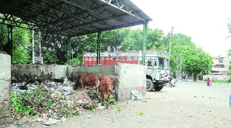 Mohali: Residents face problems with garbage dump in open