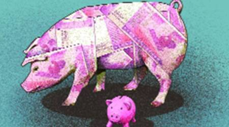 In African swine fever outbreak in N-E, a 'piggy' jackpot for Punjab