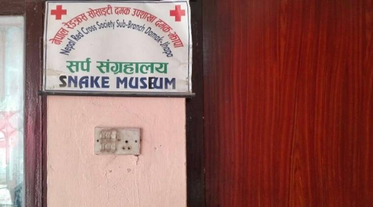 Borders melt for Indian patients seeking treatment in Nepal's snakebite treatment centres
