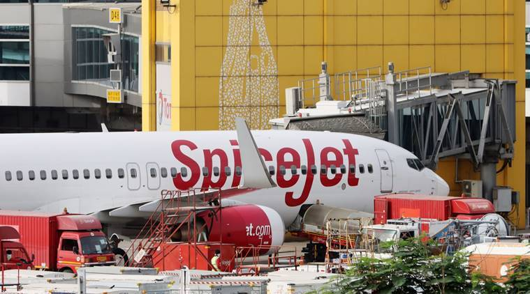 spicejet, spicejet flies to us, spicejet flies to united states, spicejet news, spicejet shares, spicejet stock price, spicejet update, aviation sector news, business news, indian express business