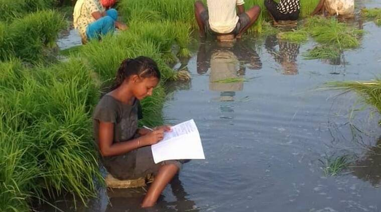 Writing their exams in paddy fields, kirana shops, these students balance studies, work