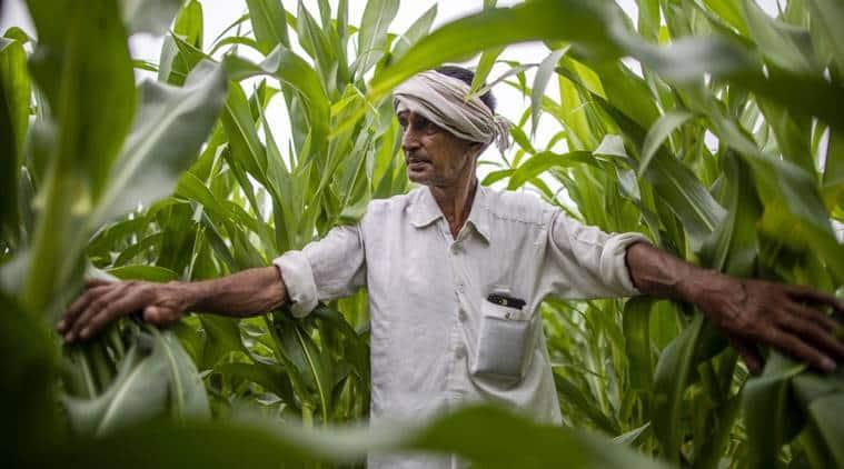 water crisis india, water shortage india, india agriculture water crisis, pm modi, narendra modi, farmers crisis india