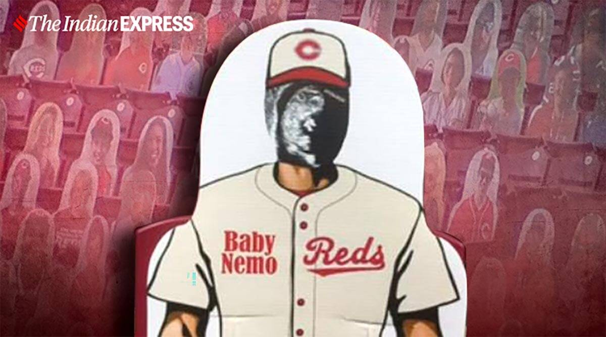 Pregnancy reveal, Sonogram, Pregnancy announcement, Fan cut out, Sonogram cut out, Cincinnati reds, American Ball Park Cincinnati Reds baseball game, Trending news, Indian Express news.