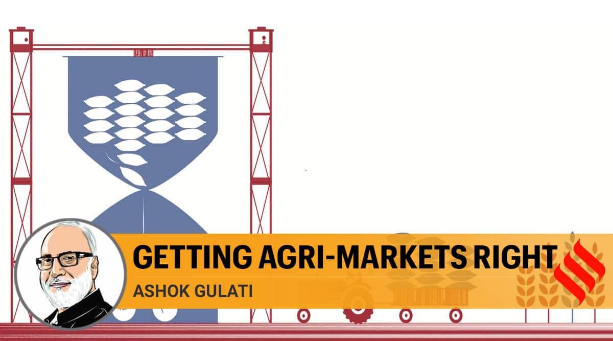 agriculture infrastructure fund, india farmers, india agrarian crisis, agriculture, rashtriya krishi vikas yojana, narendra modi, indian express