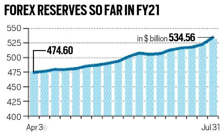foreign exchange reserves, India forex reserves, Indian economy, Covid-19 Indian economy, Indian Express