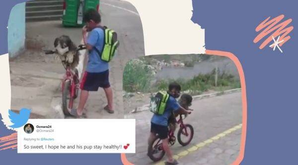 little boy makes dog wear mask viral video, Ecuador, south america, covid-19, coronavirus, trending, indian express, indian express news