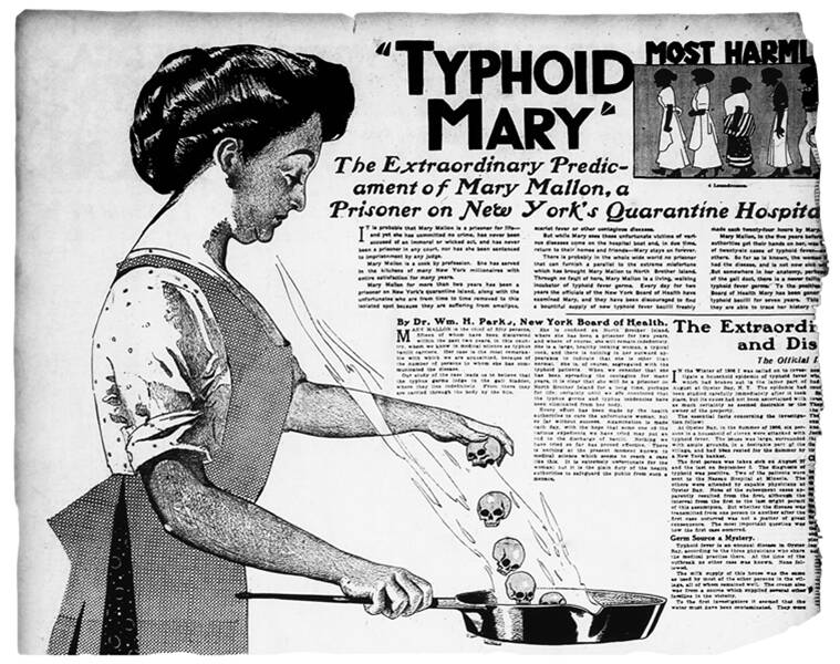 typhoid mary, who is typhoid mary, typhoid mary punjab police, tale of typhoid mary, indian express