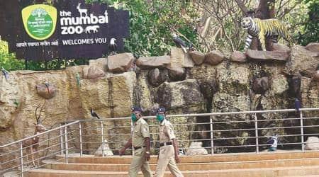 mumbai city news, byculla zoo, byculla zoo heritage fountains, Koi fish pond mumbai zoo, Koi fish pond byculla zoo