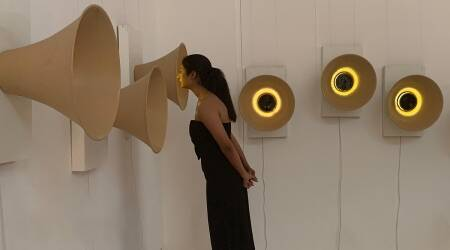 Kadambari Sahu, new media installation, Kadambari Sahu installation, indian express lifestyle, indian express news