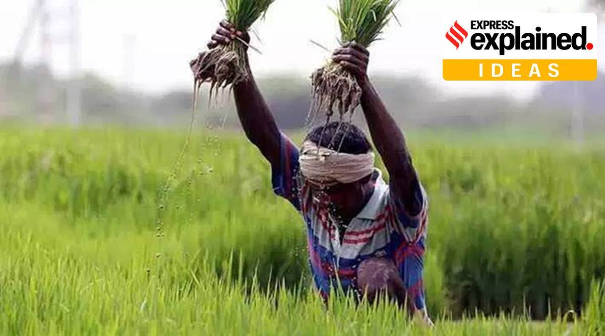 Agriculture Infrastructure Fund, AIF, Rs 1 lakh crore Agriculture Infrastructure Fund, what is Agriculture Infrastructure Fund, Explained Ideas, Express Explained, Indian Express