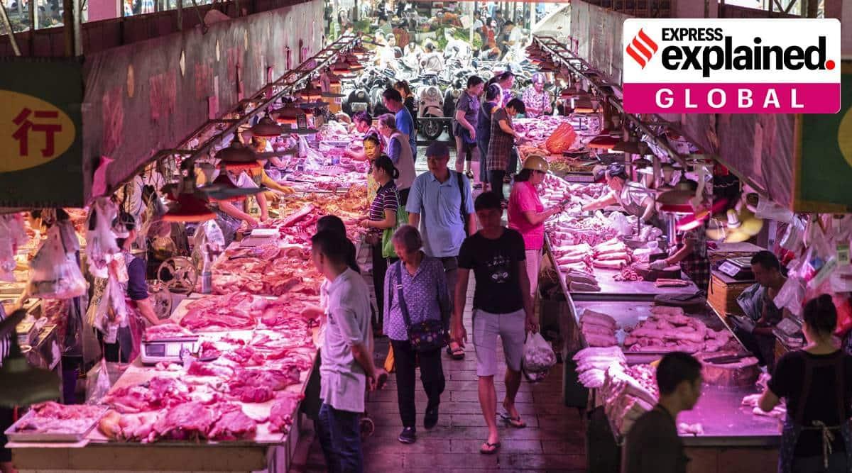 china, china food shortage, china food campaign, xi jinping, xi jinping food shortage campaign, china coronavirus, indian express