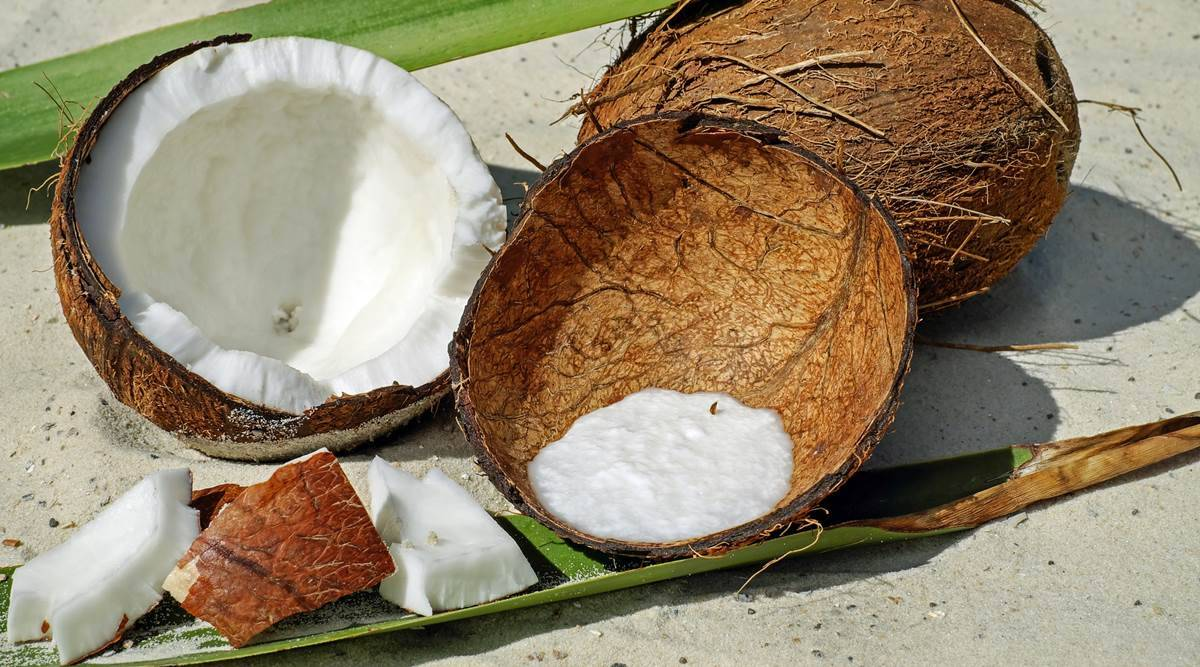 coconut milk for hair care, coconut milk, hair care at home, how to use coconut milk for hair growth, indian express, indian express news