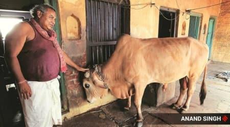 varanasi's dom raja news, dom raja passes away, dom raja death news, Jagdish Chaudhary, who was dom raja, 2019 lok sabha elections, Varanasi, Varanasi voting, Varanasi elections, Narendra Modi, PM Modi, Doms, Dom community,indian express