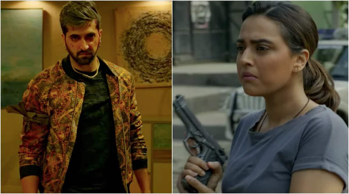 akshay oberoi, swara bhasker, flesh web series