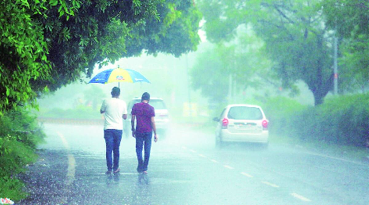 Panchkula: Heavy rain throws life out of gear in Sector 19