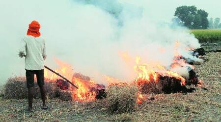 Punjab ready to sell 23,500 stubble mgmt machines on subsidy, farmers unenthused